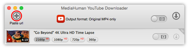 Paste link to 4K video you want to download