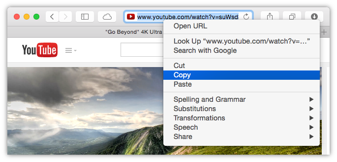 Copy the URL of video you want to download